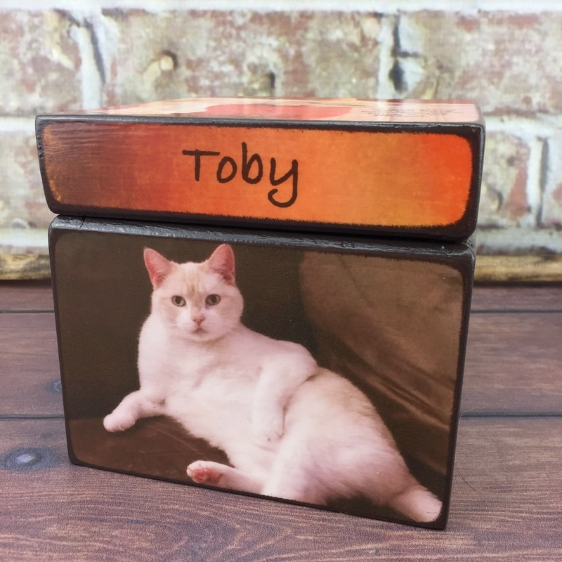 Cat Urns with picture