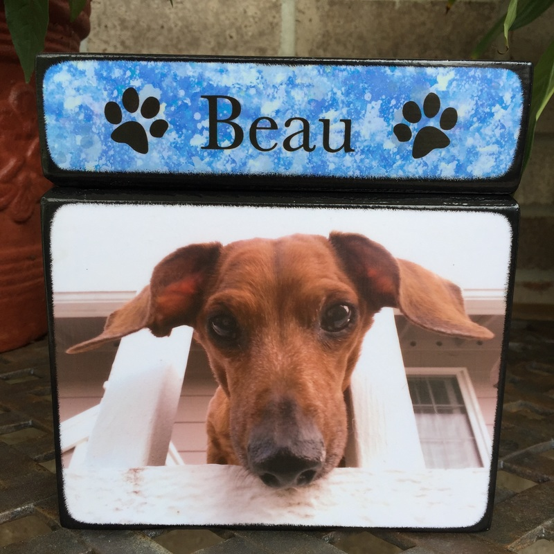 pet photo urns for ashes