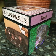 Pet Urns for dogs