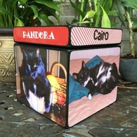 Cat Urn with pictures