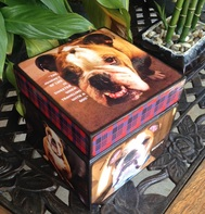 Dog Pet Urn with pictures