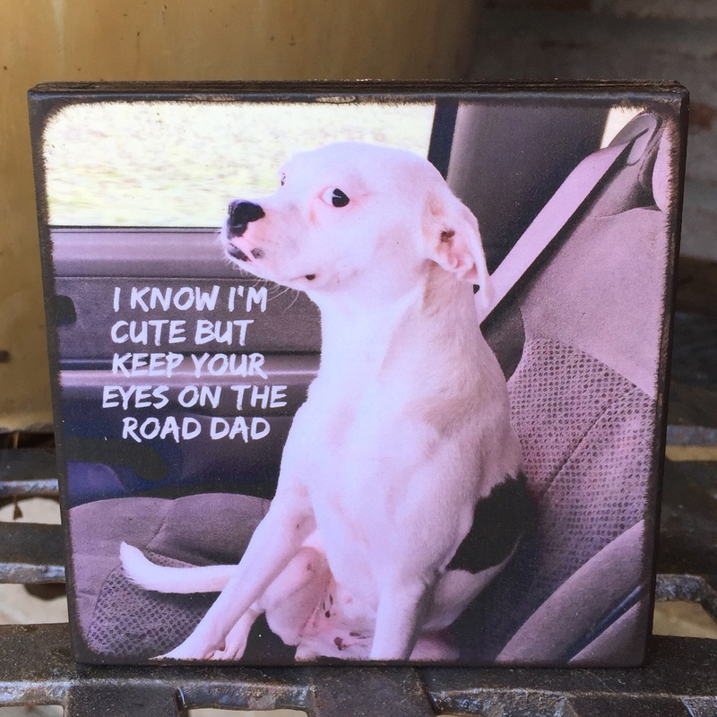 Dog personalized photo board plaque